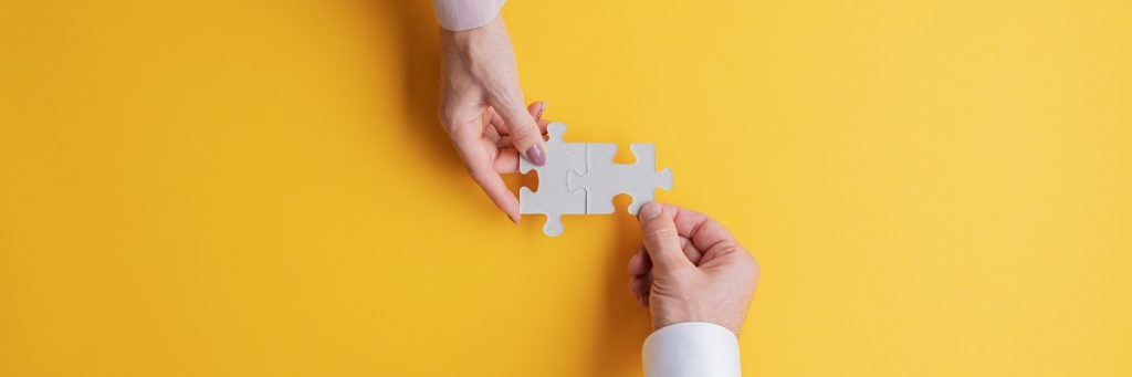 Puzzle Pieces - Importance of Interoperability